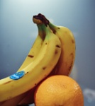 Bananas-low res